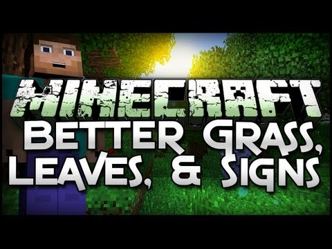 Minecraft Mod Showcase: Better Grass, Leave, and Signs!