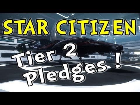 Star Citizen - Tier 2 Pledge Ships (315p, 325a, Avenger)