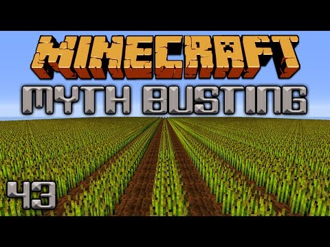 Growing Crops In Rows [Minecraft Myth Busting 43]