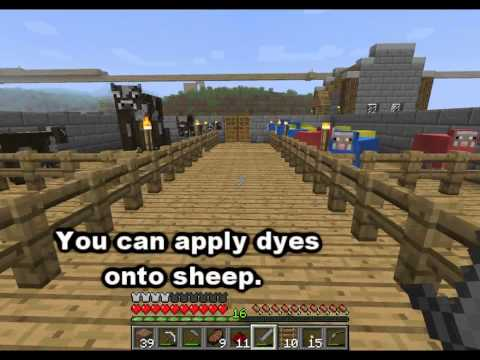Minecraft Mob Guide - Sheep [HD]