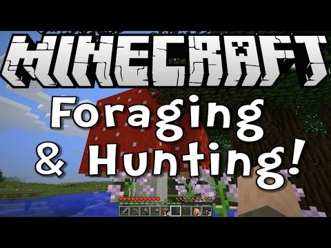 Minecraft 1.8 Tutorial - Foraging and Hunting - Episode 2 of Survive & Thrive Season 8