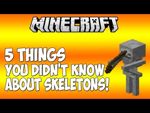 5 THINGS YOU DIDN'T KNOW ABOUT SKELETONS IN MINECRAFT