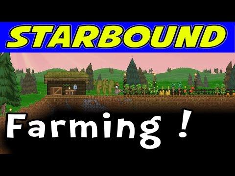 Starbound | E05
