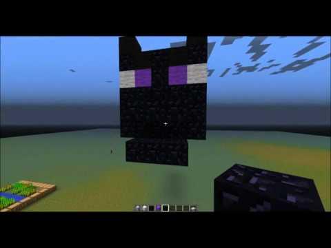 #Minecraft Enderdragon Speed build