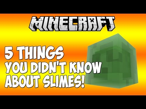 5 THINGS YOU DIDN'T KNOW ABOUT SLIMES IN MINECRAFT