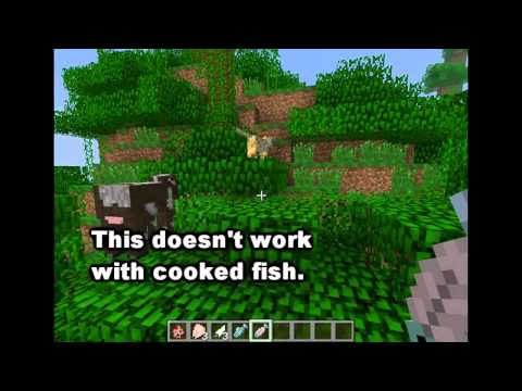 Minecraft Mob Guide - The Ocelot