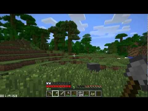 Minecraft Speed Challenge #5: Companions