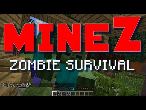 Minecraft MineZ E21